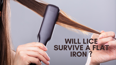 will lice survive a flat iron